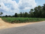 243 Perches Commercial Land for sale at Balalla, Maho.