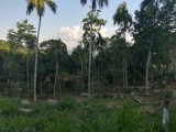 Residential Land Blocks for Sale at Kegalle