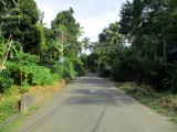7.5 Acres Rubber Land for sale in Mawenella, Kegalle District