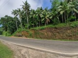Land for sale in Karawanella, Ruwanwella.