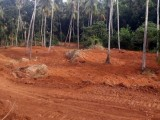 3.5 Acres Land for Sale at Warakapola Road, Mirigama.